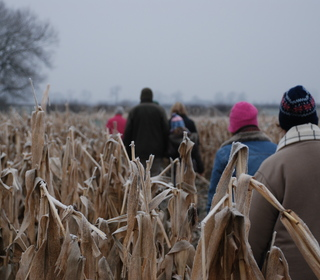 And through the frozen corn field.