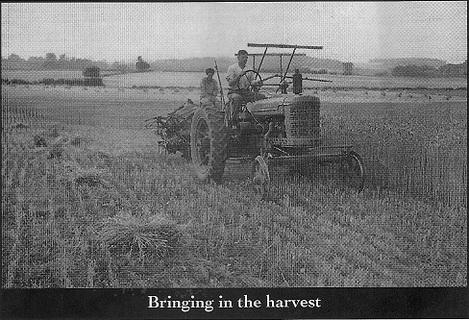 Bringing in the Harvest