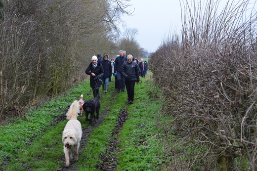 Even the dogs changed colours on this walk!