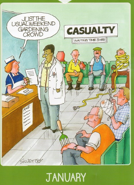 Gardening on the NHS