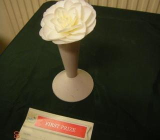 White Camellia Exhibit