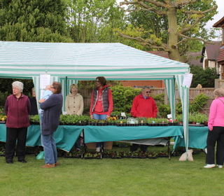 Thank you Plant Sales helpers