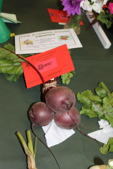 Winning Beetroot Exhibit