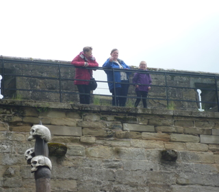 The Potts family view their ancestors