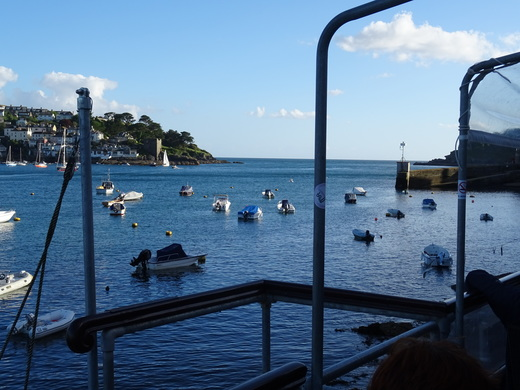Looking seawards from Fowey (Tanner)