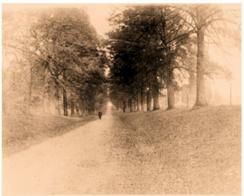 Early Photograph circa 1895