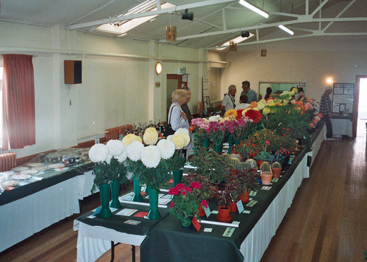 2006 Annual Show