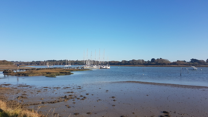 Day 4 - Last morning on The Beaulieu River