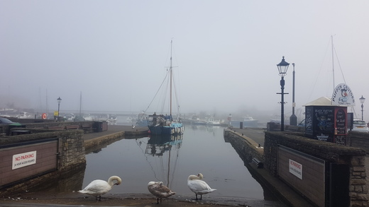 Day 2 - Misty morning in Lymington