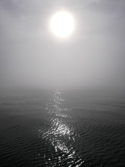 Sun through Channel Fog - 2 of 2