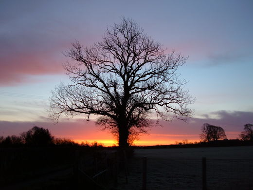 Sunset from Sue (Long Eaton)