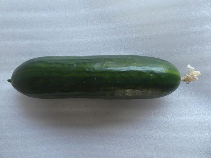 Cucumber Passandra from Sue (Long Eaton)
