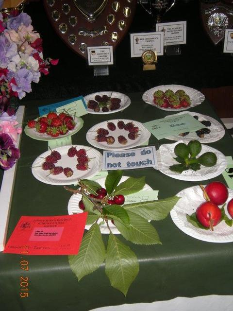 Cherries Exhibited by David Jamson