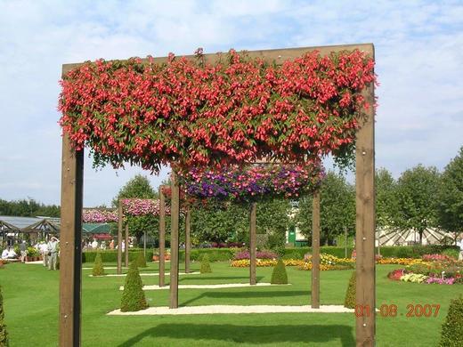 General Garden View